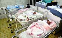 خبری خوش برای خانواده چندقلوها
