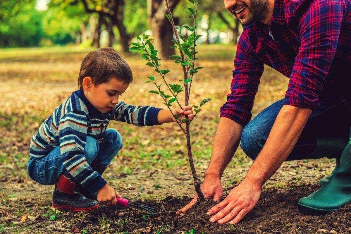 چطور می شود کودکان را با طبیعت دوست کرد؟