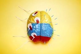 مغز حین خواب خاطرات غیرضروری را پاک میکند
