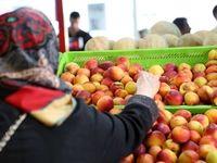 قیمت هندوانه تا ۴۰۰تومان کاهش یافت +جدول
