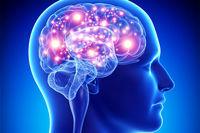 ۷عامل کلیدی برای حفظ عملکرد مطلوب مغز با افزایش سن