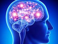 سلامت مغز را تضمین کنید