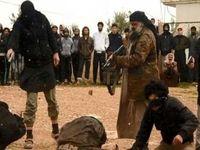 روسیه: داعش به شبکهای مانند القاعده تبدیل میشود