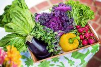 رشد 97 درصدی صادرات سبزی و صیفی/ ارز تک نرخی راهکار رسیدن به صادرات در حجم و ارزش مناسب
