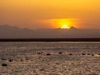 تالاب حوض سلطان +تصاویر