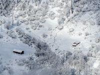 برف زمستانی در بهار مازندران +تصاویر