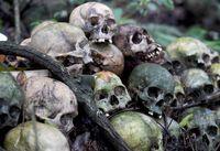 کرونا و مردگانی که در فضای باز میپوسند! +تصاویر