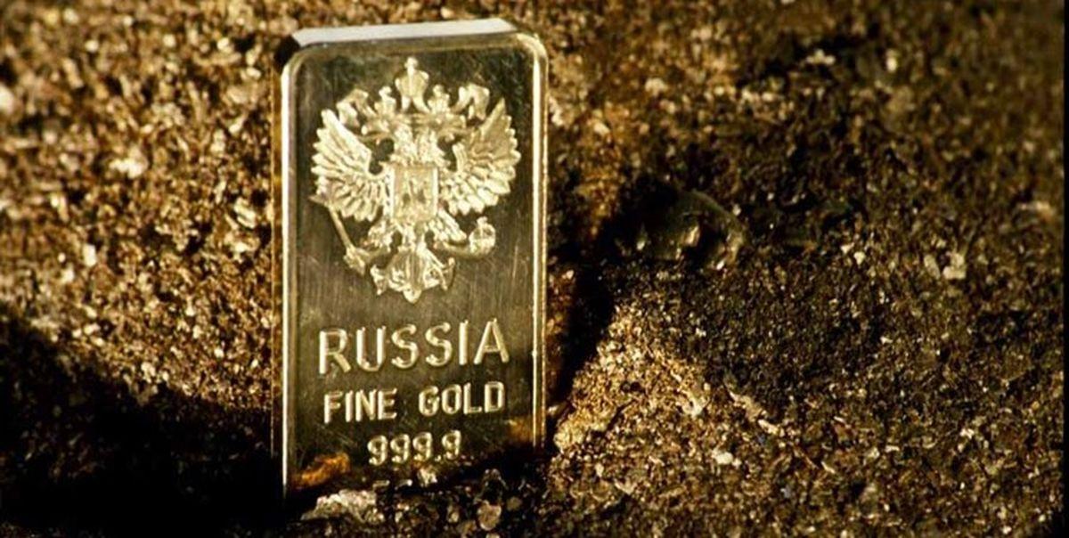 افزایش ۳میلیارد دلاری ذخایر ارزی روسیه در یک هفته