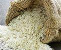 15500 تومان؛ قیمت هر کیلو برنج ایرانی