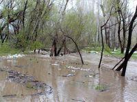 سیل و توفان در خلخال +تصاویر