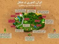 مهمترین دلایل نابودی جنگلها +اینفوگرافیک