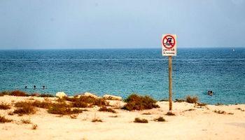 پاکسازی سواحل دریای کیش +عکس