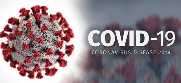 میزان مرگ و میر کروناویروس به ۳/۴ درصد رسیده است