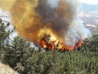 عملیات ۶ساعته برای اطفای حریق در ارتفاعات لشگرک