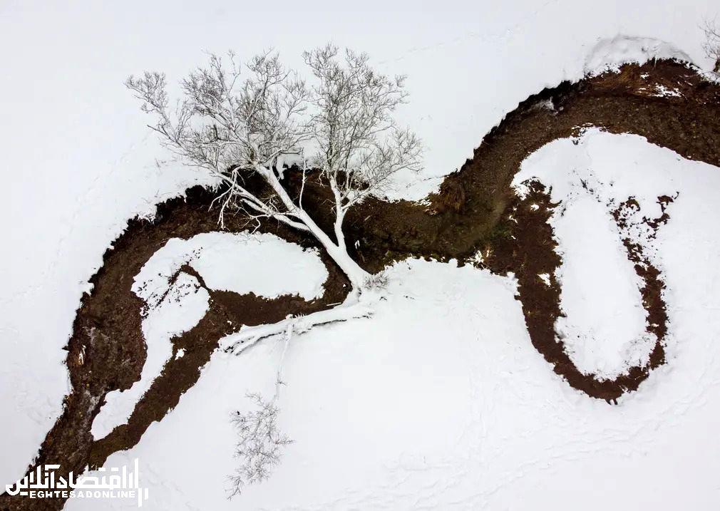 برترین تصاویر خبری ۲۴ ساعت گذشته/ 8 بهمن