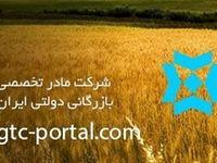 ۳۳۸میلیون یورو از تعهد ارزی شرکت بازرگانی دولتی ایران انجام نشد