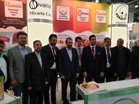 تاکید سفیر ایران بر لزوم استفاده از ظرفیتهای بازار روسیه
