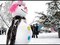 تعطیلی زمستانی مدارس به رأی مجلس نیاز دارد
