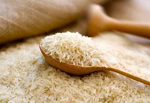 ۲۰ درصد؛ کاهش واردات برنج