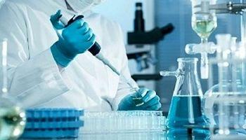 تولید سلولهای کبدی و قلبی از سلولهای پرتوان انسانی