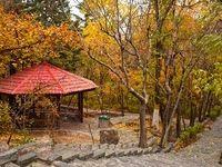 احتمال تعطیلی بوستانهای تهران برای مقابله با کرونا