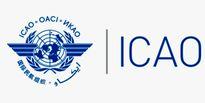 ایکائو خواستار تسریع در بررسی حادثه هواپیمای اوکراینی شد