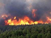 بیش از ۴هکتار جنگل های بهشهر در آتش سوخت