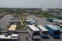 دلیل آزادی سفر با وسایل حملونقل عمومی چیست؟
