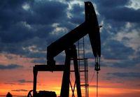 رشد اقتصادی کشورهای نفتی در حال کاهش است