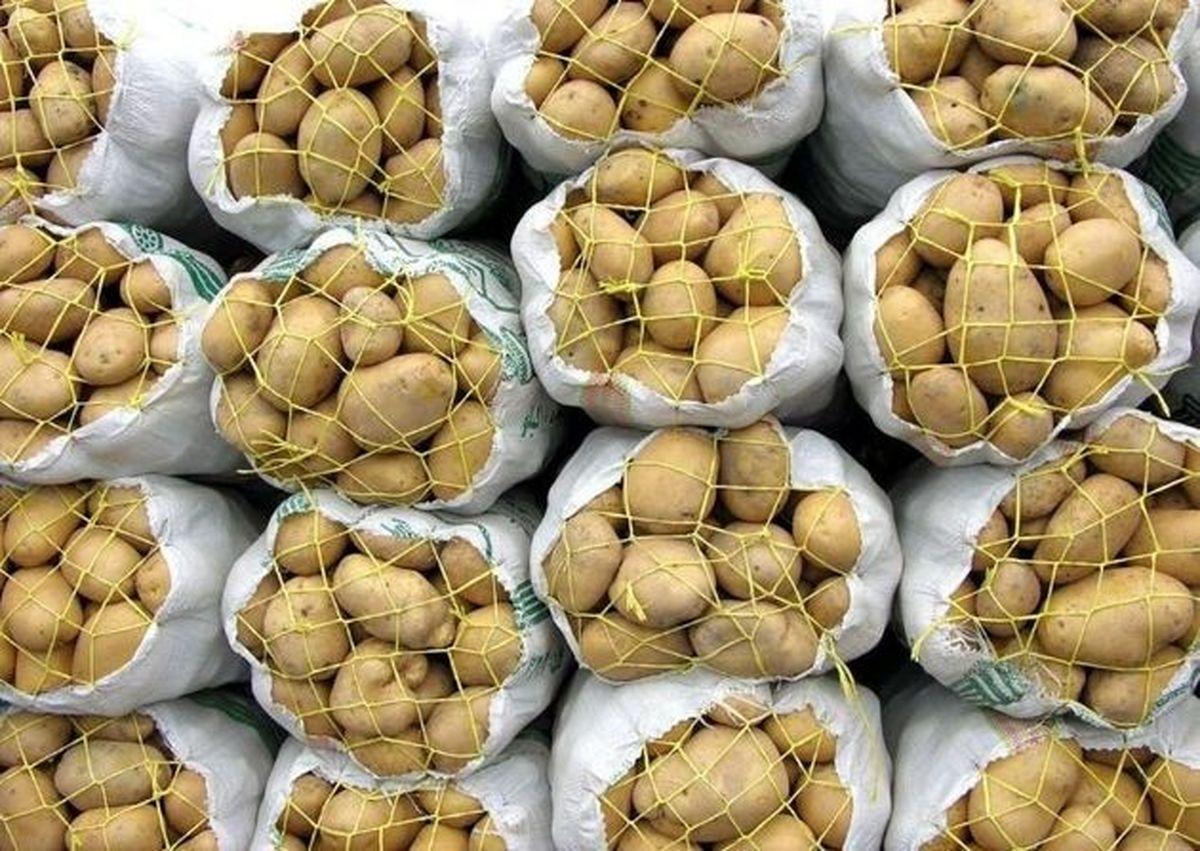 صادرات سیبزمینی بدون پرداخت عوارض مجاز است