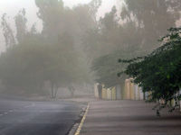 وزش باد شدید در غرب مازندران +فیلم