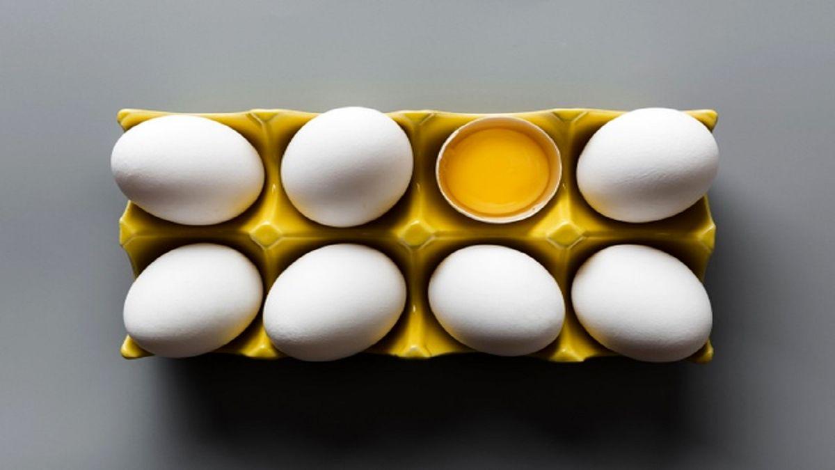 مشکل اساسی تخم مرغ بحث توزیع است