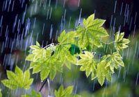 حجم بارشها به ۱۶۶میلیمتر رسید