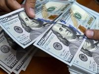 دلار ۴۲۰۰تومانی فقط برای کالاهای اساسی و دارو/ معامله ارز پتروشیمیها در بازار ثانویه