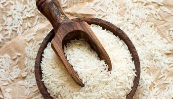 جولان دلالان در بازار برنج