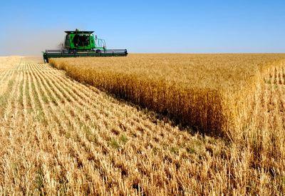 بررسی تغییر قیمت انواع محصولات کشاورزی
