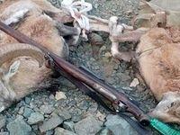 دستگیری شکارچی سابقهدار در صحنه جرم +عکس