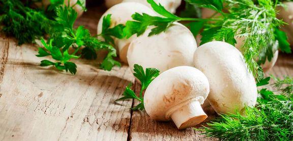 چه کسانی نباید قارچ بخورند؟