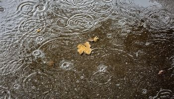 رشد بارشها در پاییز و زمستان امسال/ مازندران پربارشترین و سیستان بلوچستان کم بارشترین استانهای ایران هستند