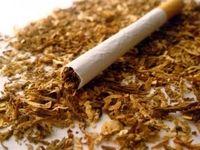 افزایش عجیب واردات محصولات توتون و تنباکو