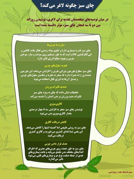 چرا چای سبز لاغرتان میکند؟ +اینفوگرافیک