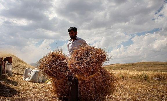 تخصیص ۱.۵ میلیارد دلار برای اشتغال روستایی