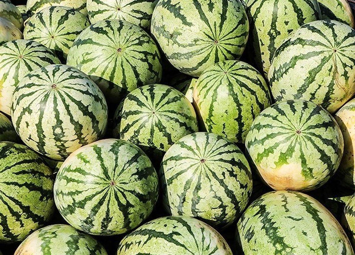 عراق از ایران ۱۰۰میلیون دلار گوجه و هندوانه خرید