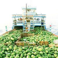 افزایش ۲۹درصدی صادرات آب به نام هندوانه!