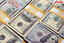 چرا دلار ارزان شد؟/ پیش بینی یک صراف از ادامه روند کاهشی بازار ارز
