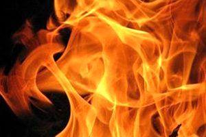 ۱۵ مصدوم بر اثر آتشسوزی در جاده چالوس