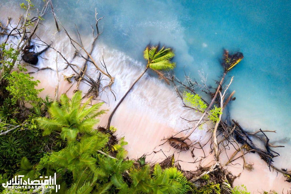 مسابقه عکاسی محیط زیـست 2019