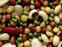 مصرف پروتئین گیاهی عمر را طولانی میکند
