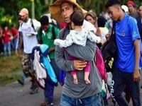 ترامپ درخواست پناهندگی مهاجران را ممنوع اعلام کرد
