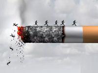 هزینه ۱۵میلیون دلاری برای واردات کاغذ سیگار